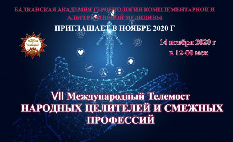 balcanskaya_akademiya_telemost